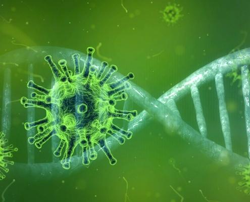 coronavirus 4833754 1920